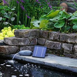 Pompe & Filtration de bassin